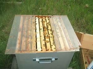 Comment Faire Une Ruche : la pose des hausses ma methode histoires d 39 abeilles ~ Melissatoandfro.com Idées de Décoration