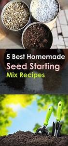 5 Best Homemade Seed Starting Mix Recipes