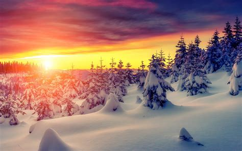 Top Winter Picture by 4k Winter Wallpaper 28 Images