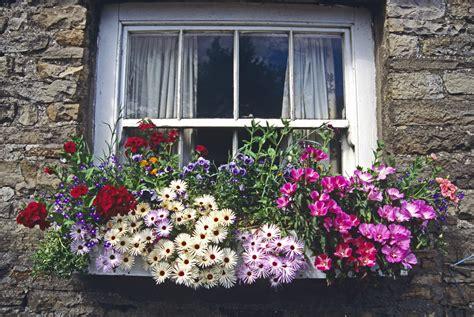 Blumenkästen Bepflanzen Ideen by Blumenkasten Gestalten 187 Sch 246 Ne Ideen F 252 R Den Balkonkasten