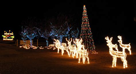 belton texas christmas lights princess decor