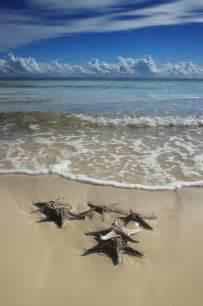 Moreton Island Queensland Australia
