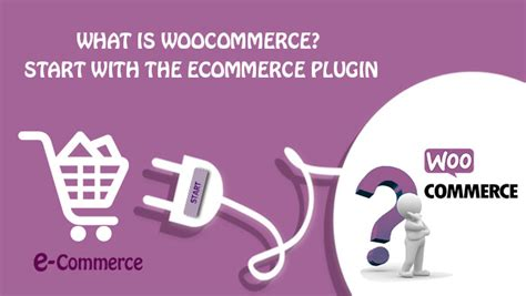 what is woocommerce start with the ecommerce plugin alinga