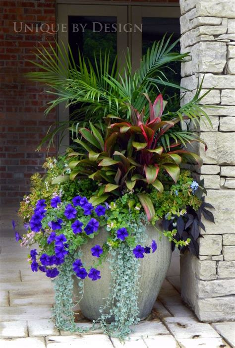 A Group Planting In One Large Container Is Much More