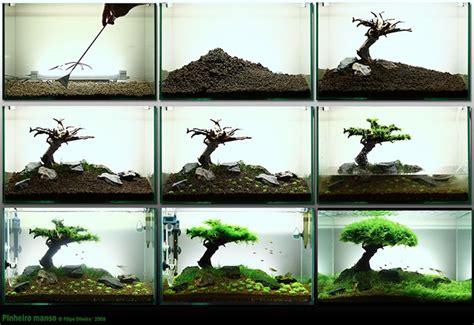 how to aquascape a freshwater aquarium landscape fish tank aquariums fish tanks