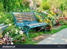 Flower Lovely Bench Lavender Garden Full Hd Flower Rose