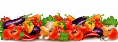 Vegetables Banner Vegetable Fresh Background Vector Colorful