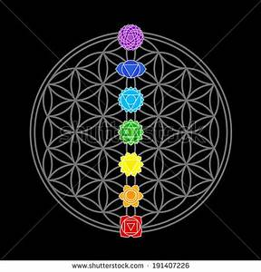 Colorful Icons Main Chakras On Flower Stock Vector ...