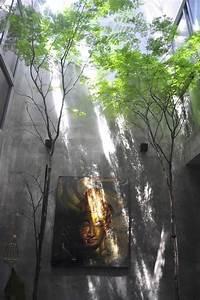 Arbre D Intérieur : maison avec patio et arbre d 39 int rieur par o2 design atelier ~ Preciouscoupons.com Idées de Décoration