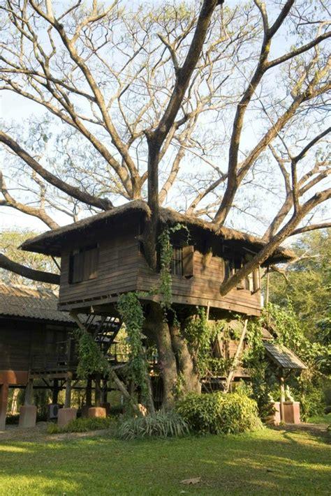 Baum Im Haus by Ein Baumhaus Erstaunliche Fotos Archzine Net