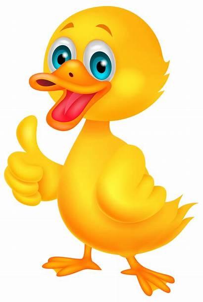 Duck Clip Clipart Clipartix