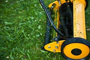 Adjusting The Cutting Height On A Reel Mower