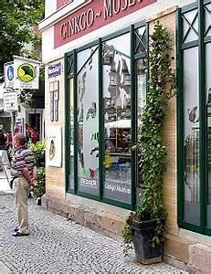 Hopfen Im Kübel Pflanzen : leichte baus tze in der drahtseiltechnik ~ Markanthonyermac.com Haus und Dekorationen