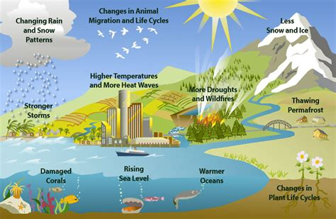 Essay about rain water harvesting