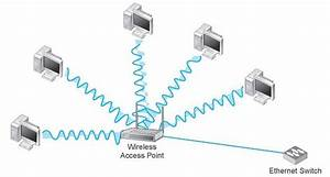 Wlan Components  Data Communications And Networking