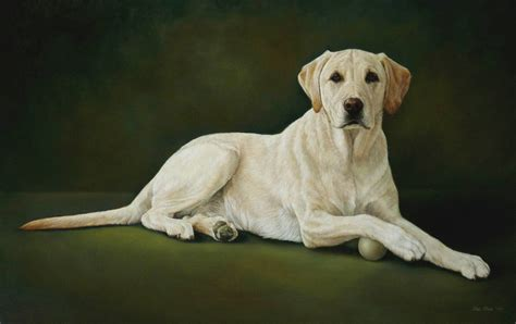 Pet Portraits The Art Of Lisa Ober
