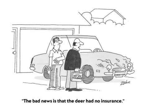 auto insurance cartoon radiusia