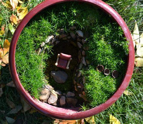 miniature gardening ideas sprout landscape garden design