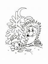 Hedgehog Coloring Animals Printable sketch template
