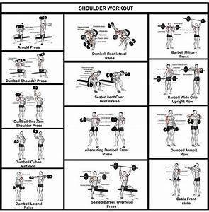 Shoulder Workout Complete Guide
