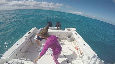 grouper closed season