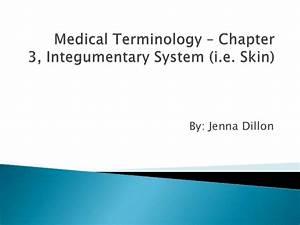 Medical Terminology  U2013 Chapter 3b Skin