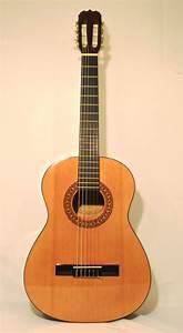 Beginner Acoustic Guitar-sunlite Gcn 800