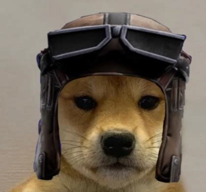 126+ Fortnite Dog With Hat