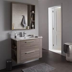 Meuble De Salle : achat de meuble de salle de bain sous vasque avec plan vasque et miroir finition olme gris ~ Nature-et-papiers.com Idées de Décoration