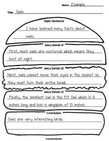writing paragraphs 2nd grade finally in hamburger paragraph craft and organizers giveaway school