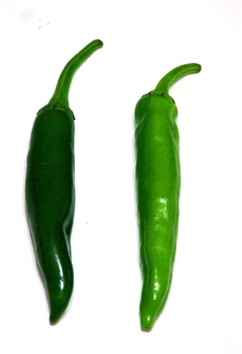 green chili pepper peppers
