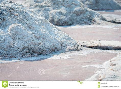 les piles de sel en sel cultivent l inde photo stock image 28489850