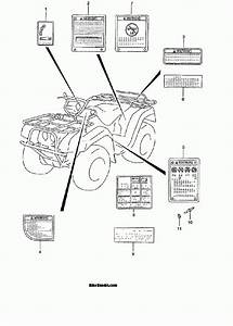 Wiring Diagram For Suzuki King Quad