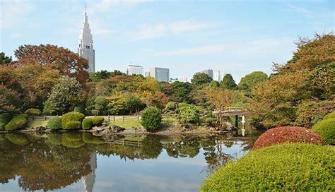 shinjuku gyoen national garden tokyo travel shinjuku gyoen
