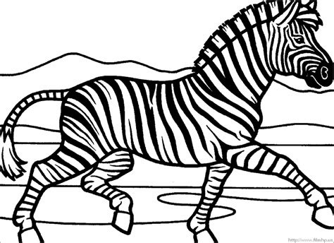 zebra coloring page marty zebra coloring pages and print for free