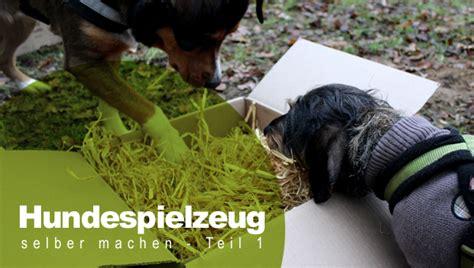 Intelligenzspielzeug Für Hunde Selber Machen (teil 1