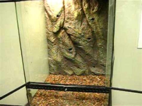 how to setup a crested gecko enclosure