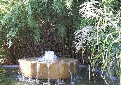 gräser für garten gartengestaltung gras bambus und wasserquelle garten und gartengestaltung wassergarten