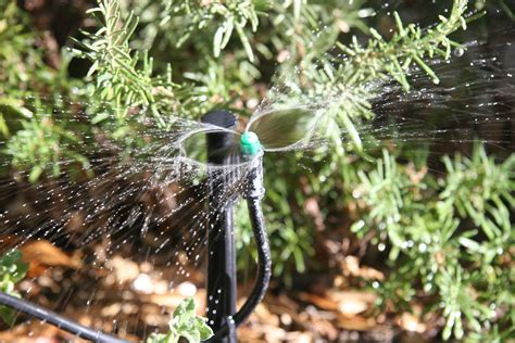 5 Install A Drip Irrigation System  The Power Of Plants