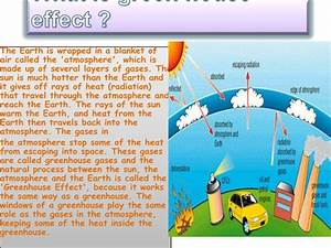 Save our mother earth essay