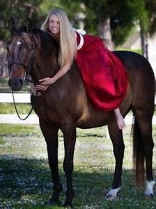Horse Decor on Pinterest