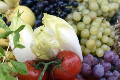elastina e collagene quali alimenti mangiare alimenti alleati di bellezza tutti i cibi per avere una