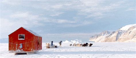 Snow Sledding GIF - Find & Share on GIPHY
