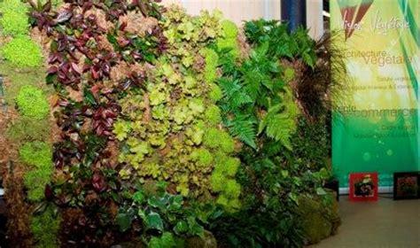 murs vegetaux et treillages tous les fournisseurs mur vegetal mur vegetal suspendu mur