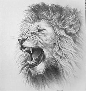 pencil-drawings-pinterest-awesome-drawings-of-lions ...