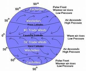 ZooBlog: Coriolis Effect