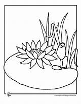 Lily Coloring Pages Flower Water Pad Drawing Frog Lilies Flowers Line Cartoon Clipart Pads Printable Drawings Colouring Draw Pond Adult sketch template
