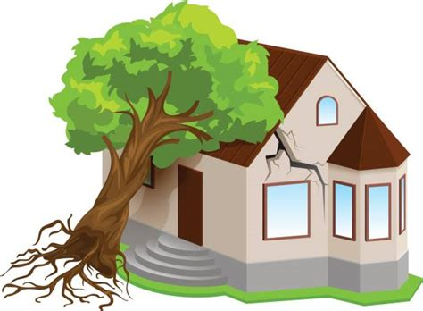 Royalty Free Tree Damage Clip Art, Vector Images & Illustrations