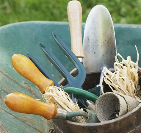 must garden tools must gardening tools buying guide