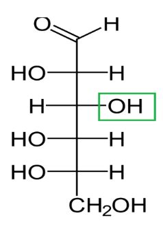 oh what a difference some difference between d and l glucose definition structure